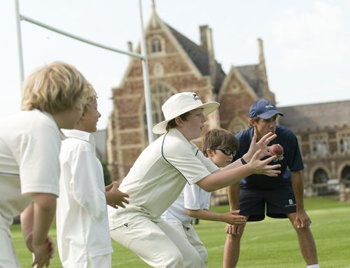 Cricket Courses